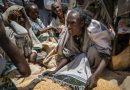 BM, Etiyopya'nın Tigray bölgesiyle iletişimin kesildiğini bildirdi